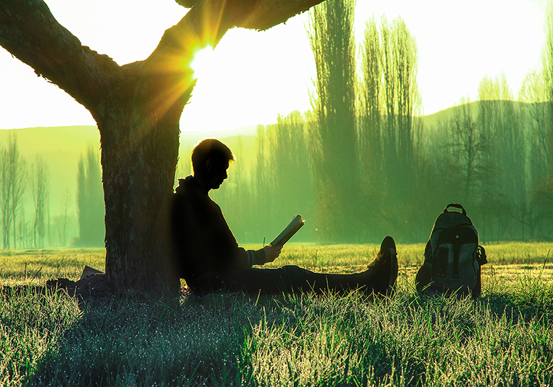 Man reading under a tree, why take a mental health day