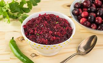 cranberry salsa recipe sm