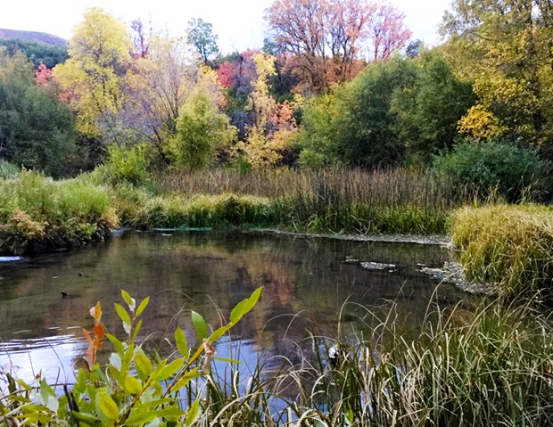 fall_colors_cascade_springs_pool