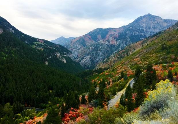 mountain_range_fall_colors