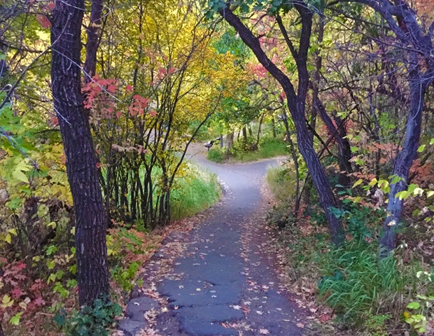 paved_path_fall_colors_cascade_springs