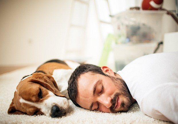 Man and his dog taking a quick nap, what are the health benefits of napping?