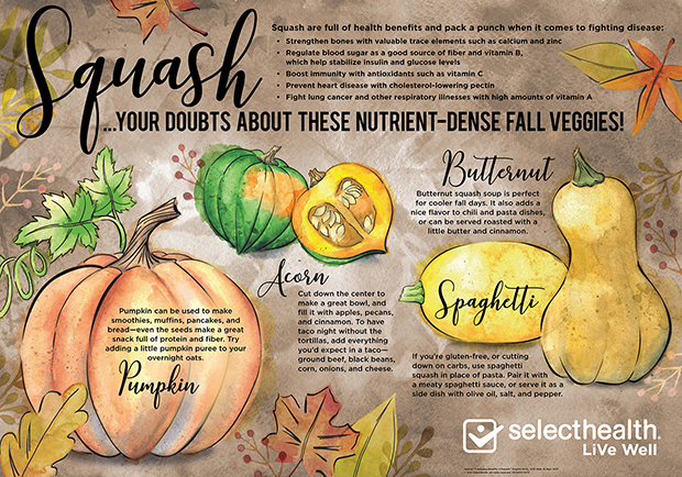 Fall Squash Infographic illustrating different types of squash