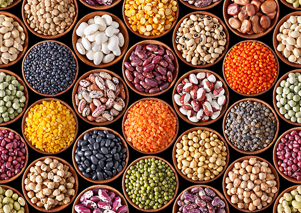 Nutritional value of beans, large assortment of beans