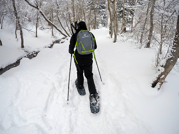 Snowshoeing, Mill Creek Canyon. Tips and advice