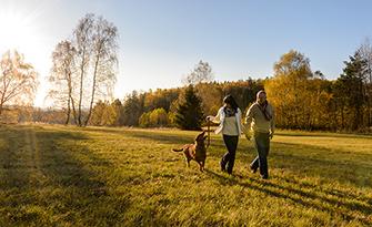 Couple walking in a field, diabetes prevention