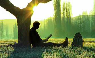 Man sitting under a tree reading a book, reasons to take a mental health day