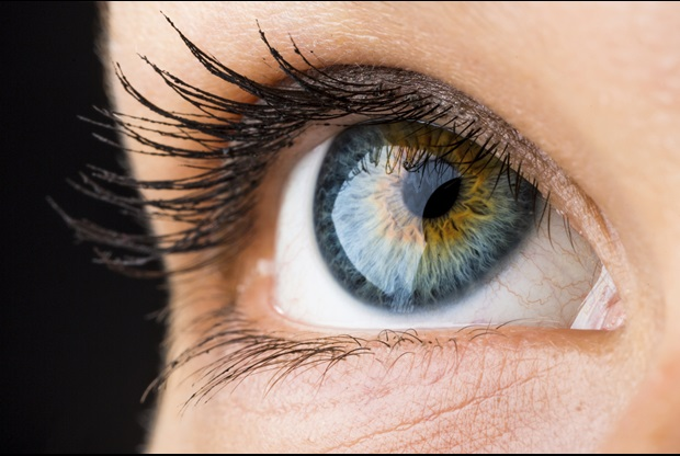 15 Things That Will Surprise you About the Human Eye