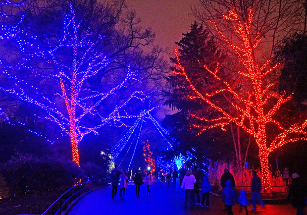 Christmas Activities In Utah.7 Festive Activities To Do Before The New Year
